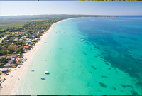 jamaica-product
